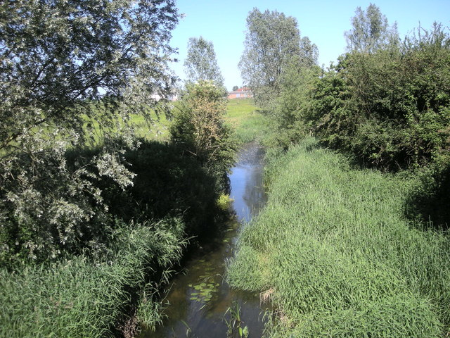 The River Itchen