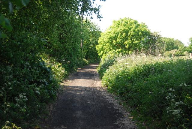 The old railway line near Larpool Hall