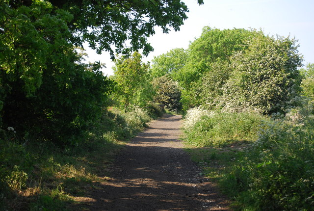 The old railway line near Larpool Hall