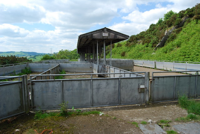 Community sheep and cattle handling pens