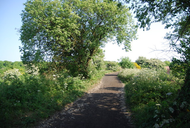 The old railway north of the Larpool Viaduct