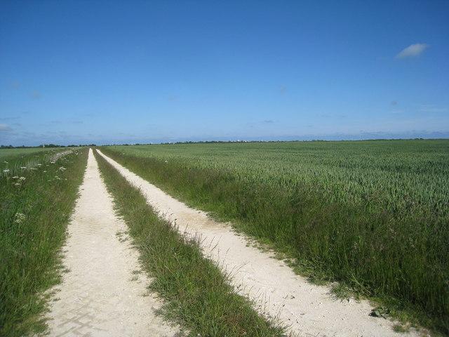 Track across Wyche