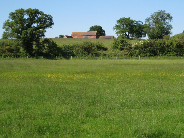 Meadow between the canal and the railway.