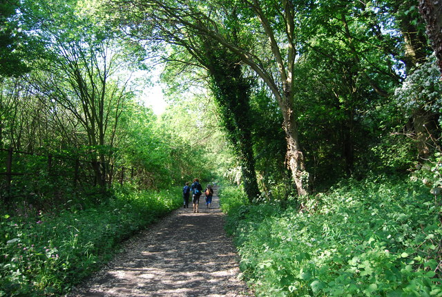 Walkers on the old railway