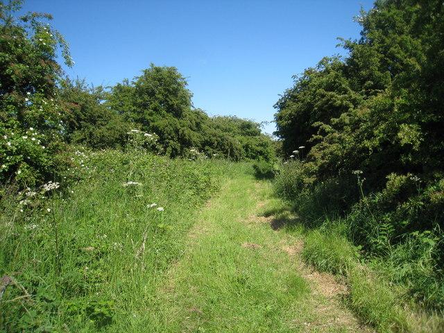 Footpath near Habertoft