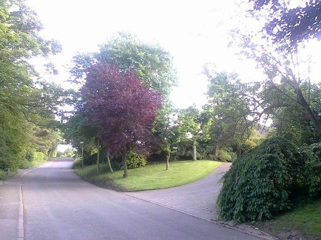 Cole Lane, Ockbrook