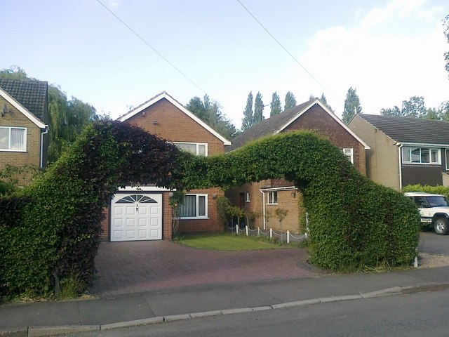 Dramatic topiary on Cole Lane