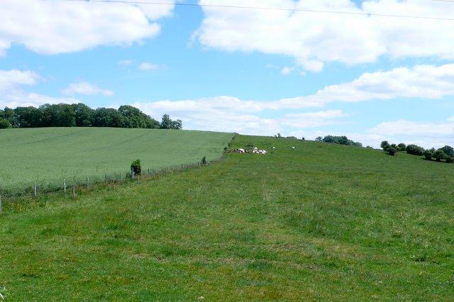 Countryside between Steeple Ashton and Trow bridge