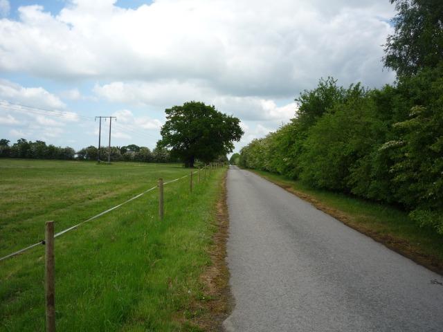 New Road near Sheepwalk Farm
