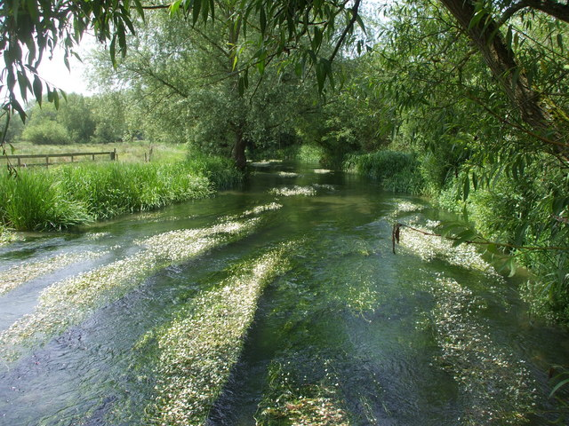 The River Lambourn at Westbrook