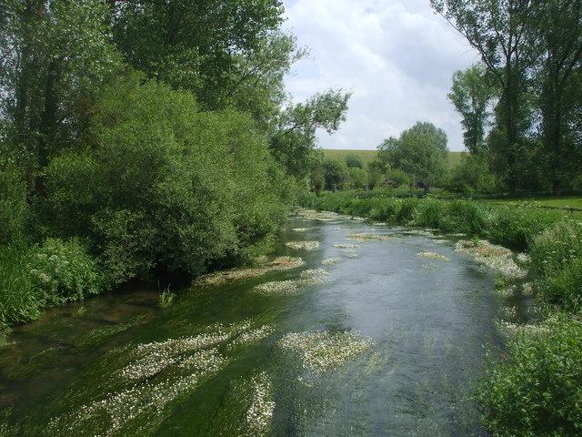 The River Lambourn at Westbrook