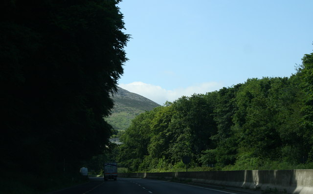 Glen of the Downs, County Wicklow (2)