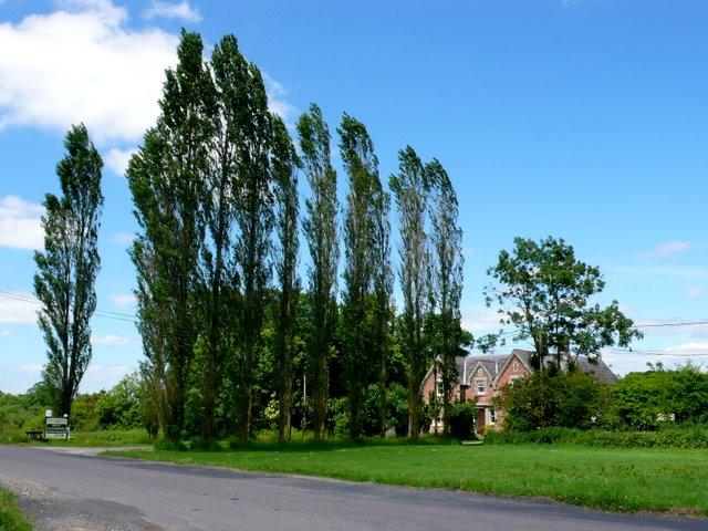 Whitebridge Farm