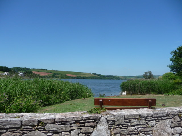 Torcross : Bench and Ducks on the Ley