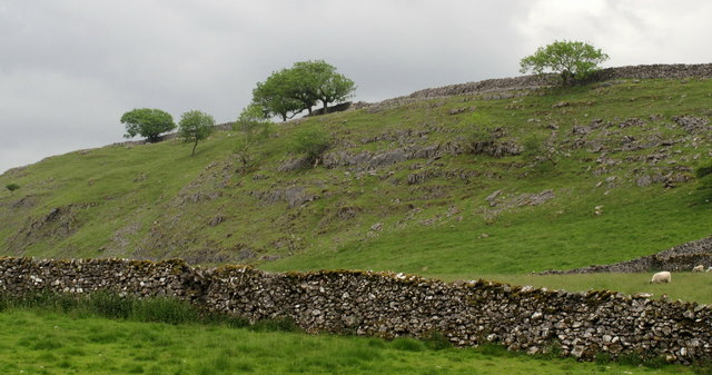 Grass Slope With Limestone Exposures