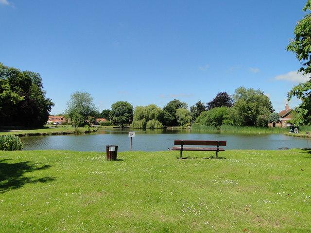 The village pond at Great Massingham