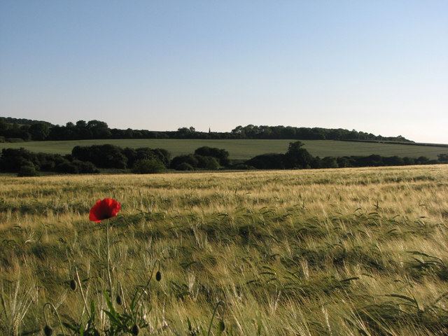 West from Tixover Church on a June evening