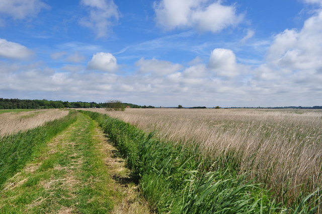 The Big Norfolk Sky