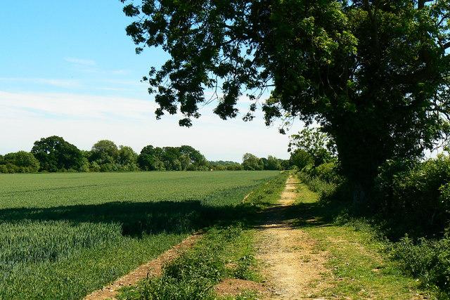 Bridleway to Down Ampney