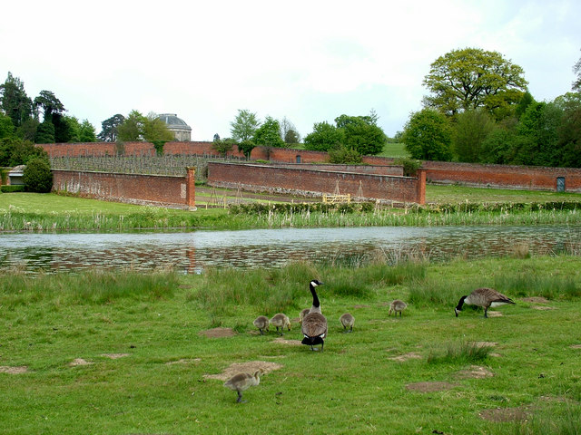 Geese by the lake and kitchen garden of Ickworth House