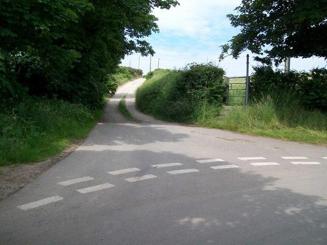 """The lane to """"Little Poland"""""""