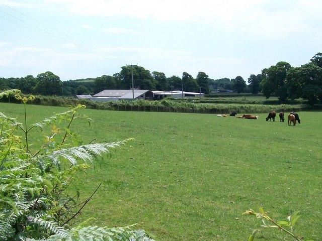 Fferm Goetre Farm, Efailnewydd