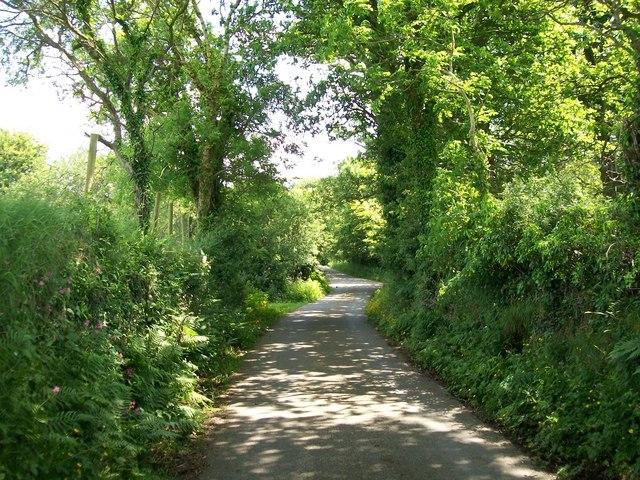 Country lane between Efailnewydd and Gorphwysfa