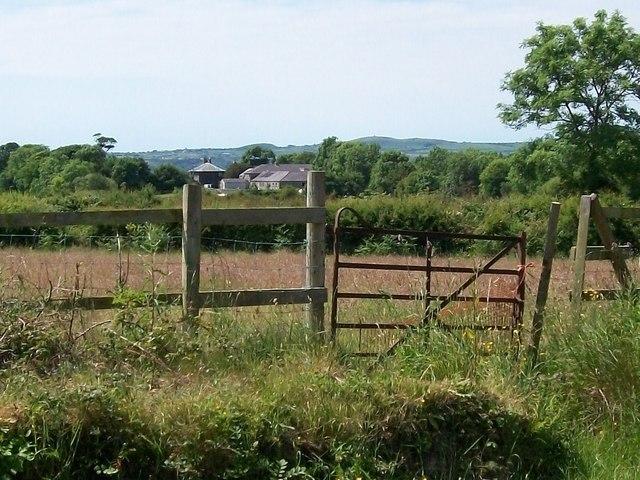 Fferm Gwynfryn Farm