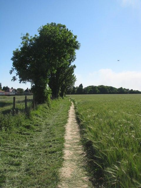Footpath through Osterley Park