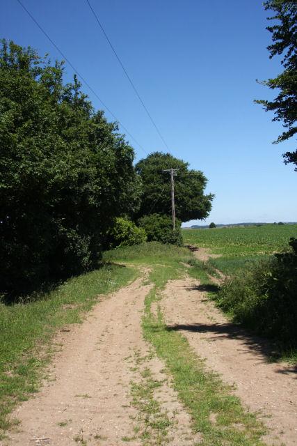 Track opposite Hall Farm Cottage