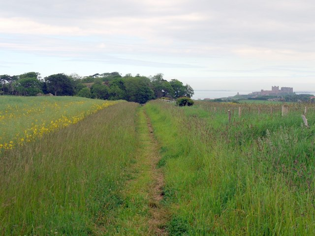 Footpath west of Shada Plantation