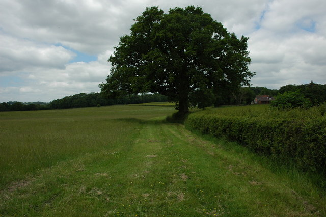 Farmland at Ullenhall