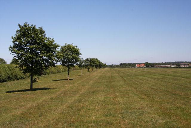 Training area near Newmarket