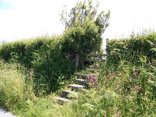 Footpath steps and stile