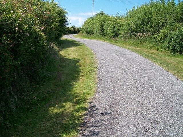 The Bryn Bachau road