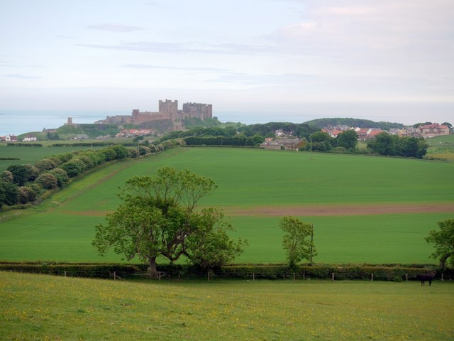 Farmland west of Bamburgh