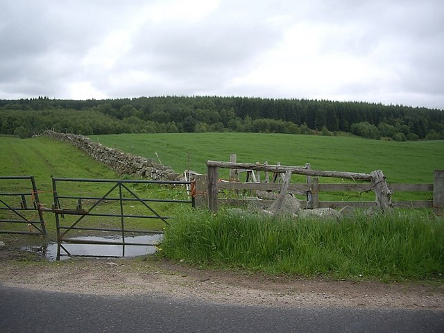 Balbridie Plantation