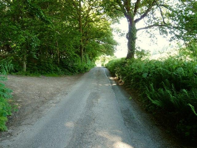 A road which runs through Buckland Down