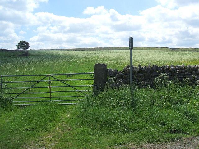 Bridleway near Gilmonby