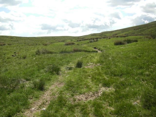 Footpath, Blake Bank Moss