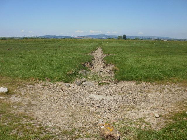 Gully draining coastal marshland