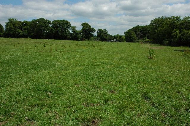 Farmland near Cadborough Farm