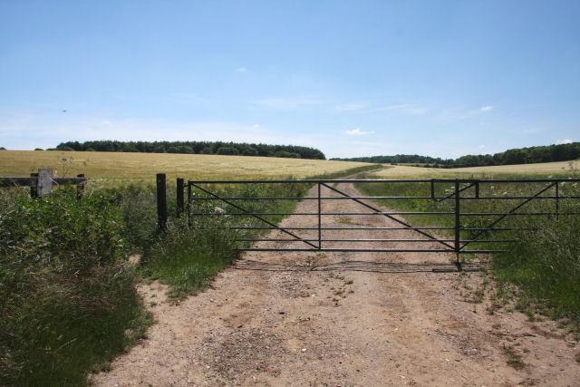 Bridleway to Woodditton