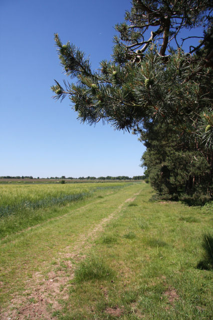Bridleway to the B1061