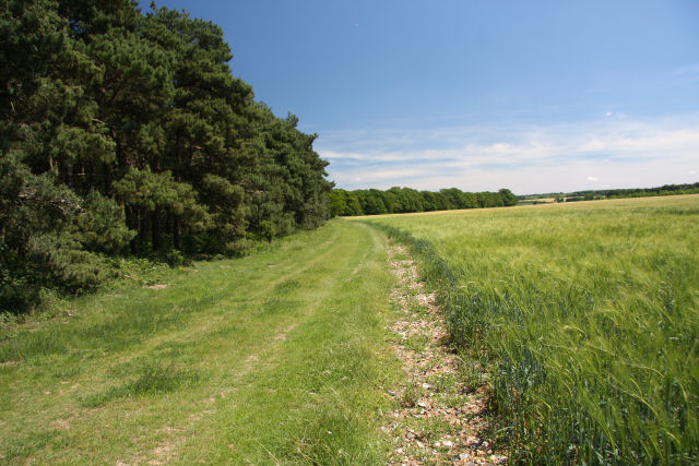 Bridleway to Court Barns Farm