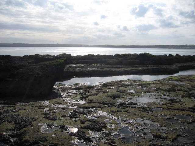Filey Brigg - view across Filey Bay