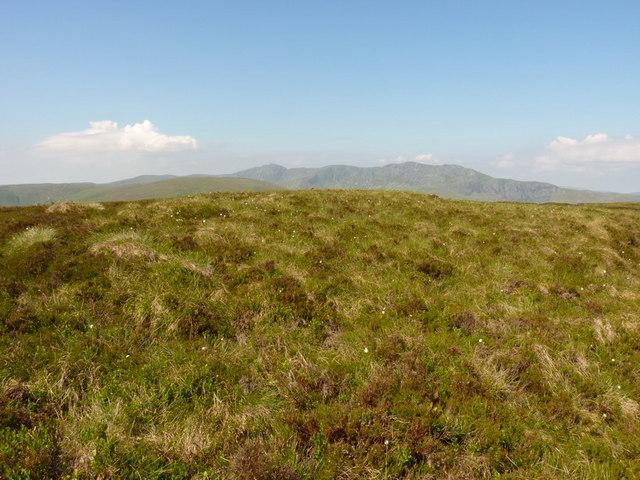 The summit of Foel Tyn-y-Fron