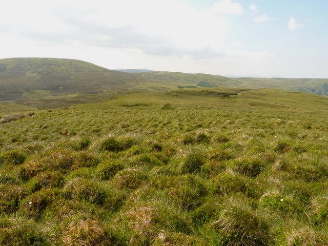 The southern ridge of Foel Tyn-y-Fron