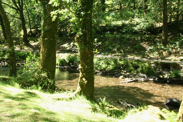 Buckland Monachorum: the river Walkham