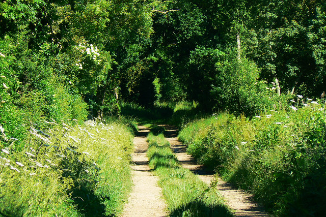 A tighter look along the byway near Manor Farm, Driffield